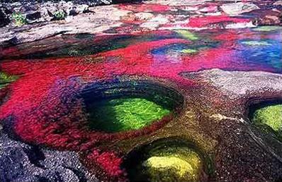 río cano cristales Colombia