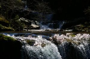 ruta de las cascadas del Parque natural Sierra Cebollera