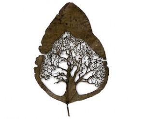 hojas de Lorenzo Durán