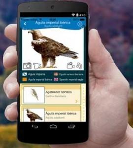 aplicación para móvil de seobirdlife