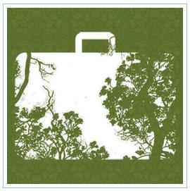 economía verde. Día Mundial del Medio Ambiente